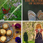 Wakelyns Community Butterfly Day