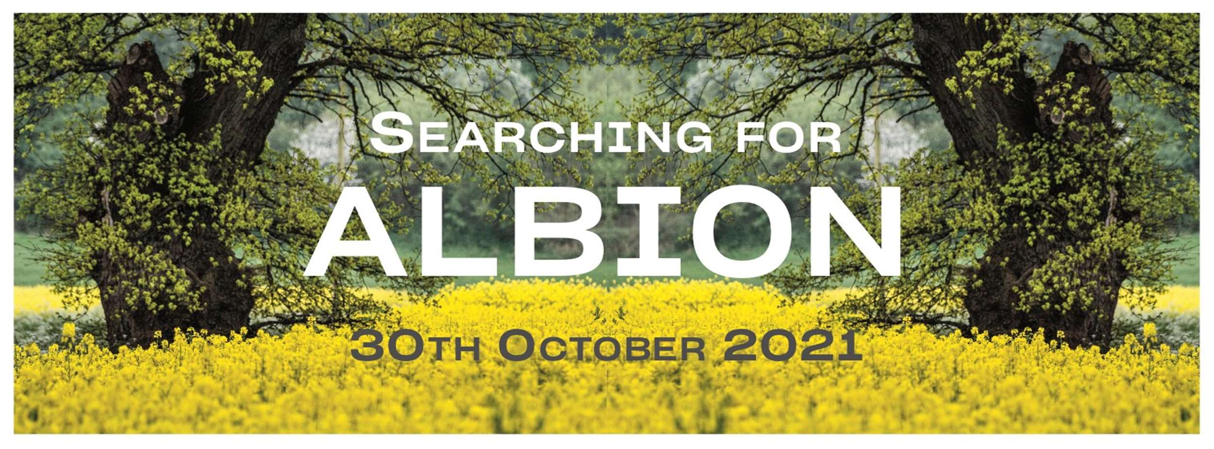 Searching for Albion